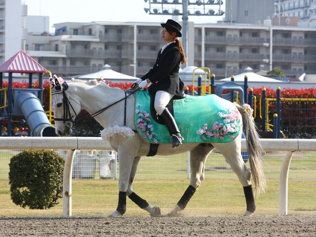 写真: 川崎競馬の誘導馬04月開催 桜Verその1-120409-06-large