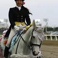 写真: 川崎競馬の誘導馬05月開催 誕生日記念レースVer-19-large