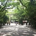 写真: 2014-06-30_02_熱田神宮