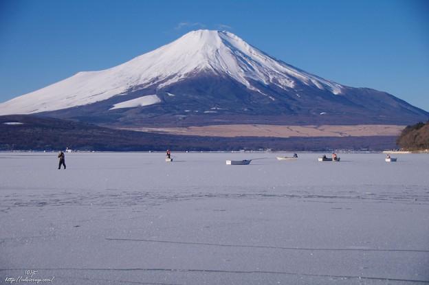 山中湖全面氷結?