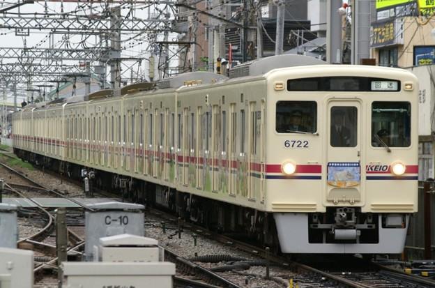 2+2+4両の変則編成で運転された「Tama Zoo Train 50周年記念号」