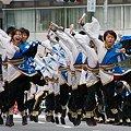 """写真: 早稲田大学 """"踊り侍""""_06 - 第10回 東京よさこい"""