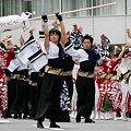 写真: 早稲田大学よさこいチーム 東京花火_03 - 第10回 東京よさこい