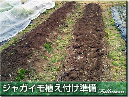07ジャガイモの準備
