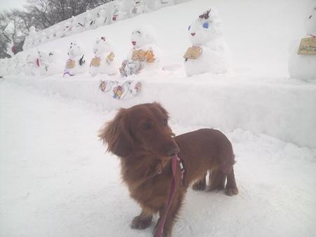 iyon20100209 雪だるまとイヨン