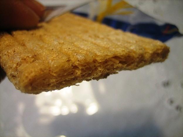 シュガーバターの木 プレーン