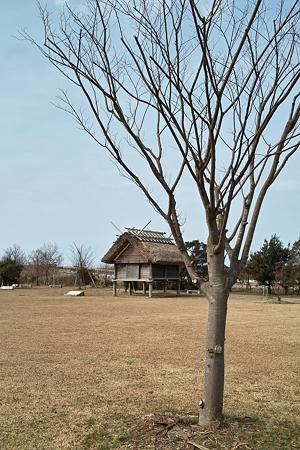 Yayoi_Park03042012dp2-01