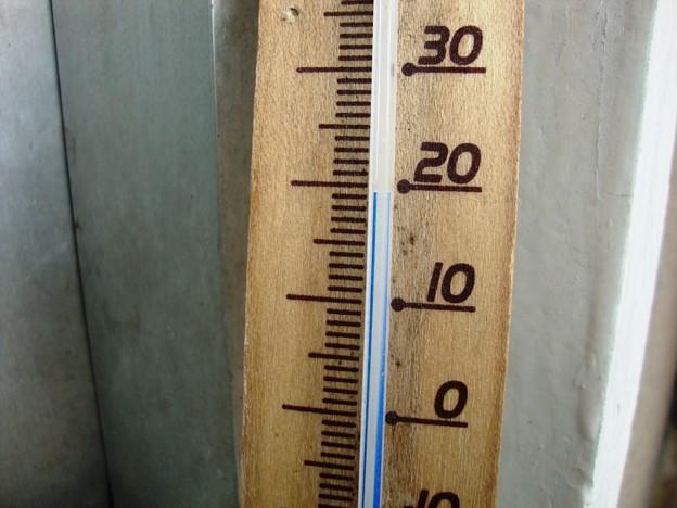 気温19.5度