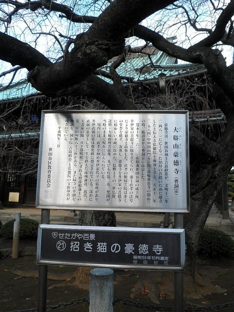 世田谷線:宮の坂駅界隈_豪徳寺-07INFO