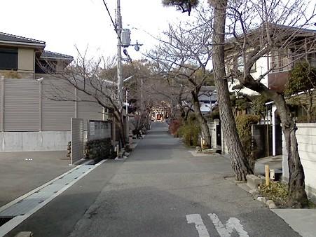 アパート前の神社への道