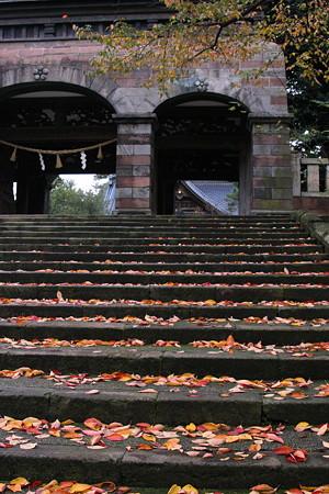 尾山神社神門  落ち葉