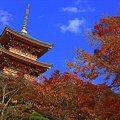 写真: 清水寺 三重塔 紅葉