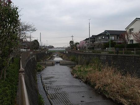 恩田川(高瀬橋付近)