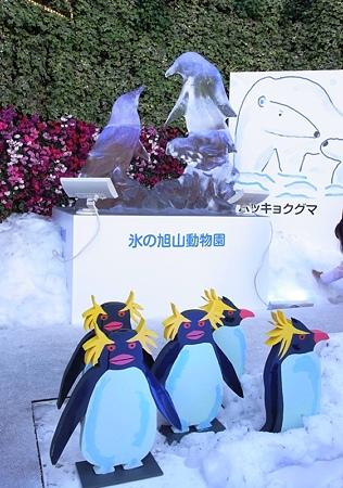200912 ソニービルの旭山ZOO 03