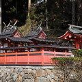 写真: 桜実神社社殿