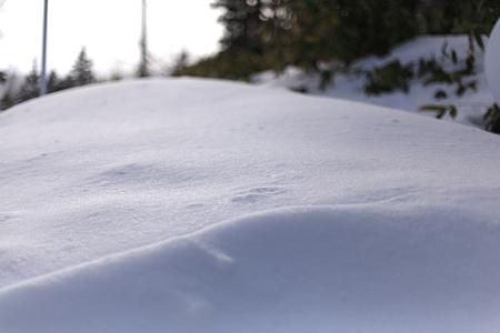 スキーの後は・・・