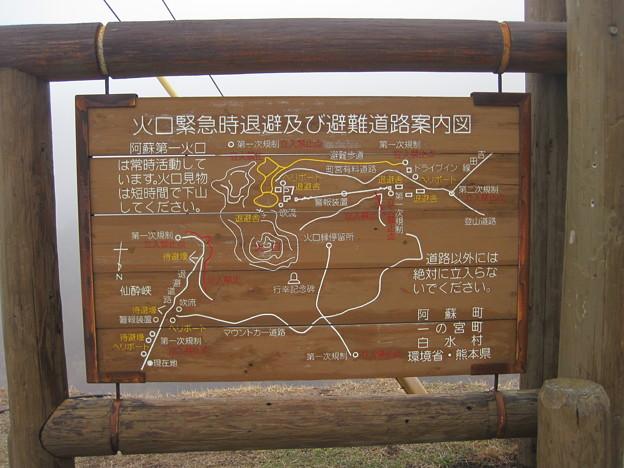 避難道路案内図