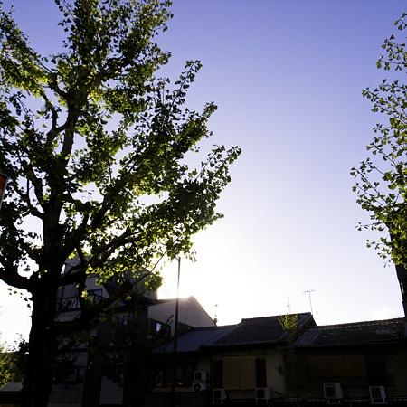 2010-11-03の空