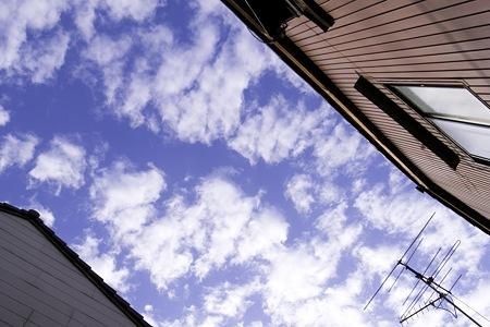 2010-12-03の空