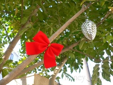 お庭のツリー2-P1160453