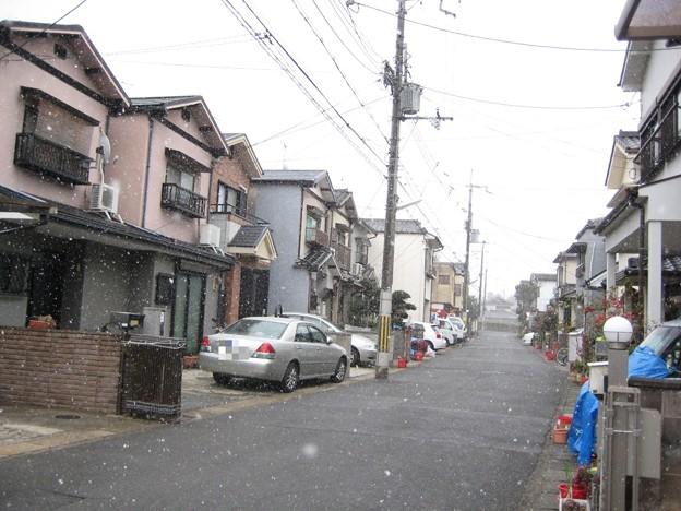 写真: 100206_yuki