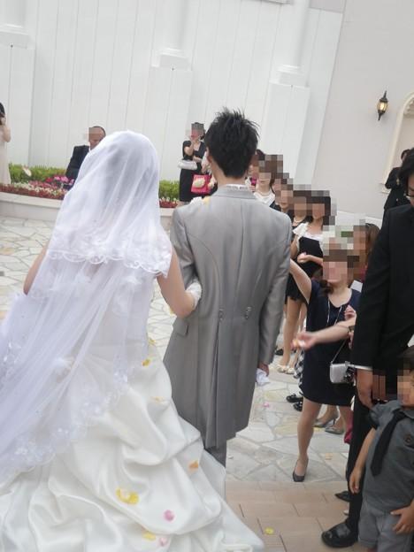 写真: 姪の結婚式