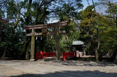 氷川神社(さいたま市)・宗像神社
