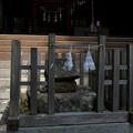 写真: 河口浅間神社・ヒイラ石