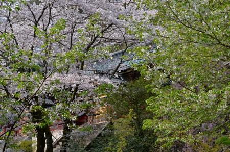 静岡浅間神社・本殿(神部神社)