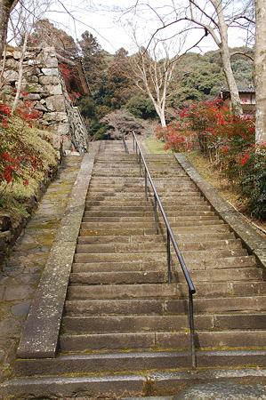 菩提山正暦寺