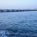 写真: 20091107_162034