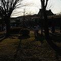 写真: 20100110_152426