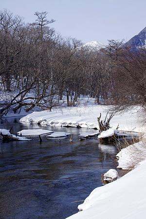 雪原を抜ける湯川
