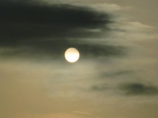 薄雲からの太陽