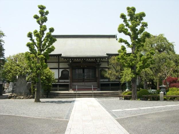 善龍寺の境内