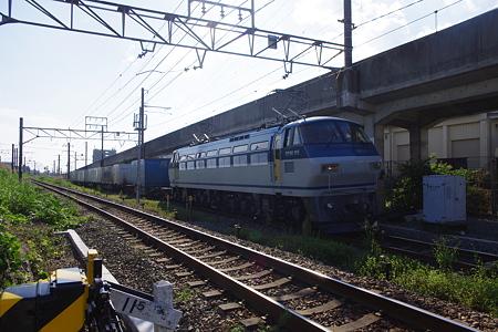 IMGP6234