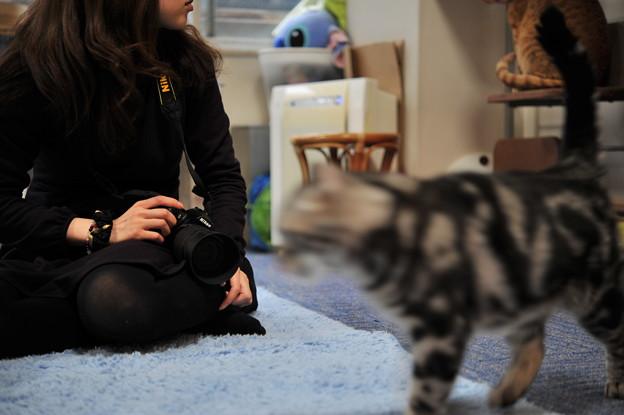 猫カメラ女子休憩中