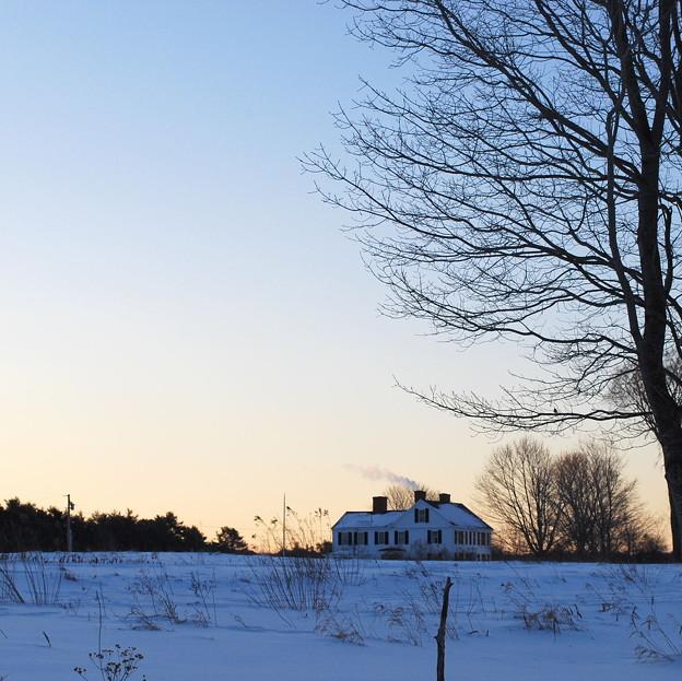 写真: the House on the Field