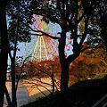 Photos: 遊園地