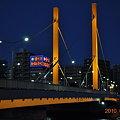 Photos: 新大橋(夜景)DSC_1206