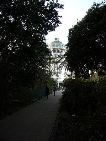 091115-江の島展望台 (1)