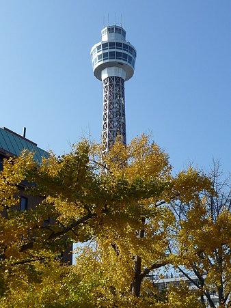 091123-山下公園通 (10)