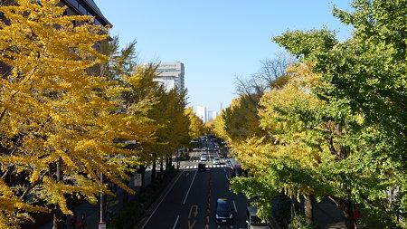 091123-山下公園通 (12)