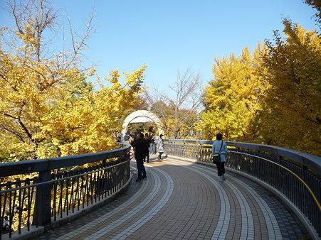 091123-山下公園通 (17)