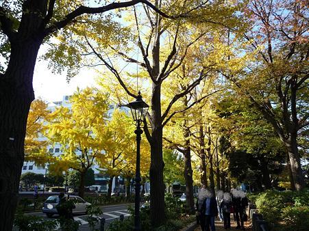 091123-山下公園通 (59)