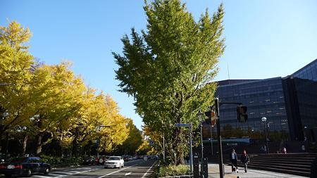 091123-山下公園通 (77)