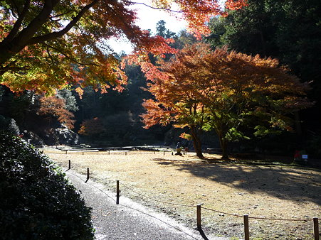 091204-明月院庭園 (2)