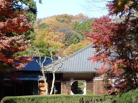091204-明月院庭園 (5)