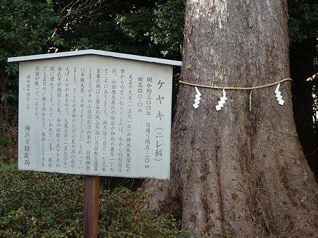 100120-日枝社 (3)