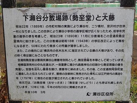 100120-8.全通院勢至堂 (3)
